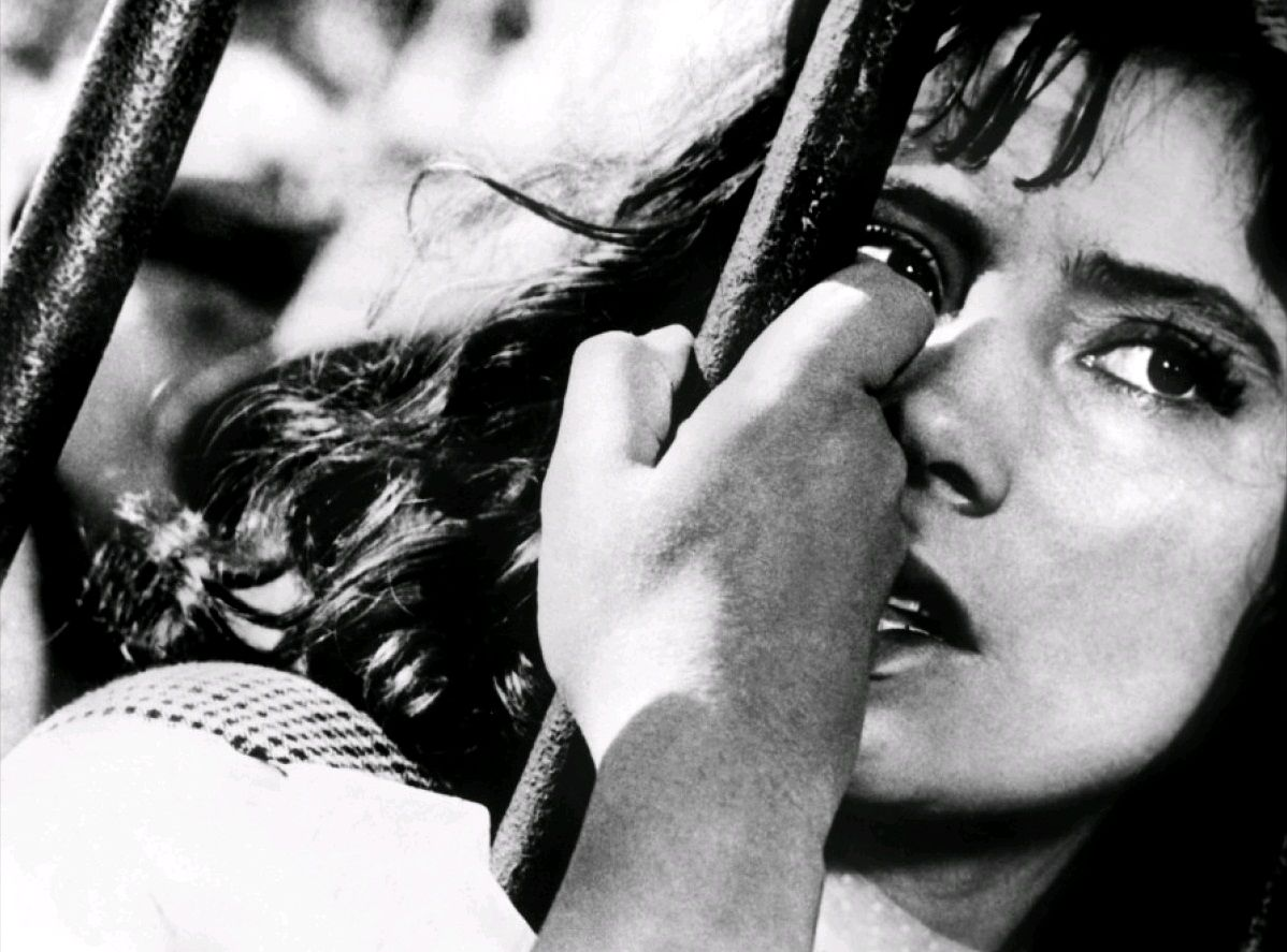 Летят журавли / Letyat zhuravli (1956): кадр из фильма