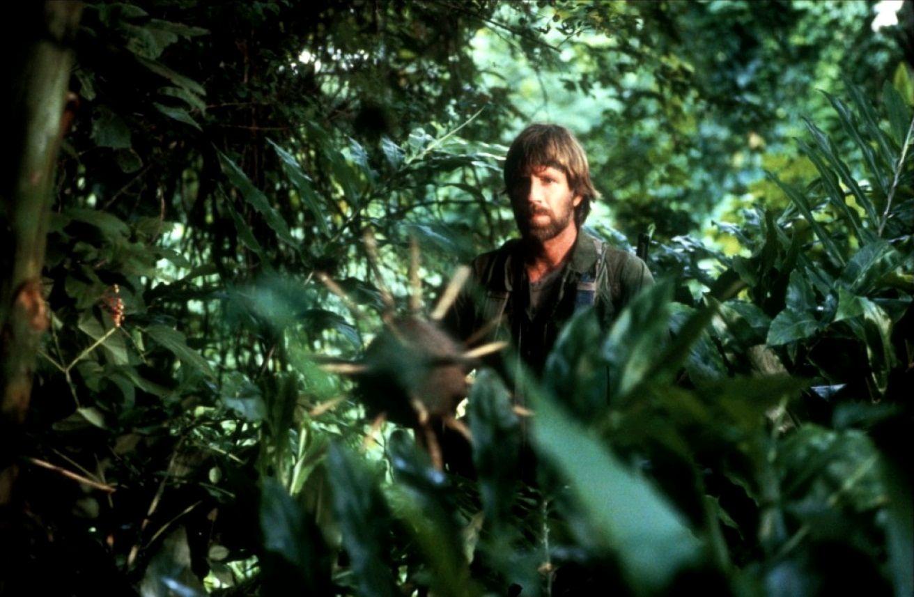 Без вести пропавшие / Missing in Action (1984): кадр из фильма