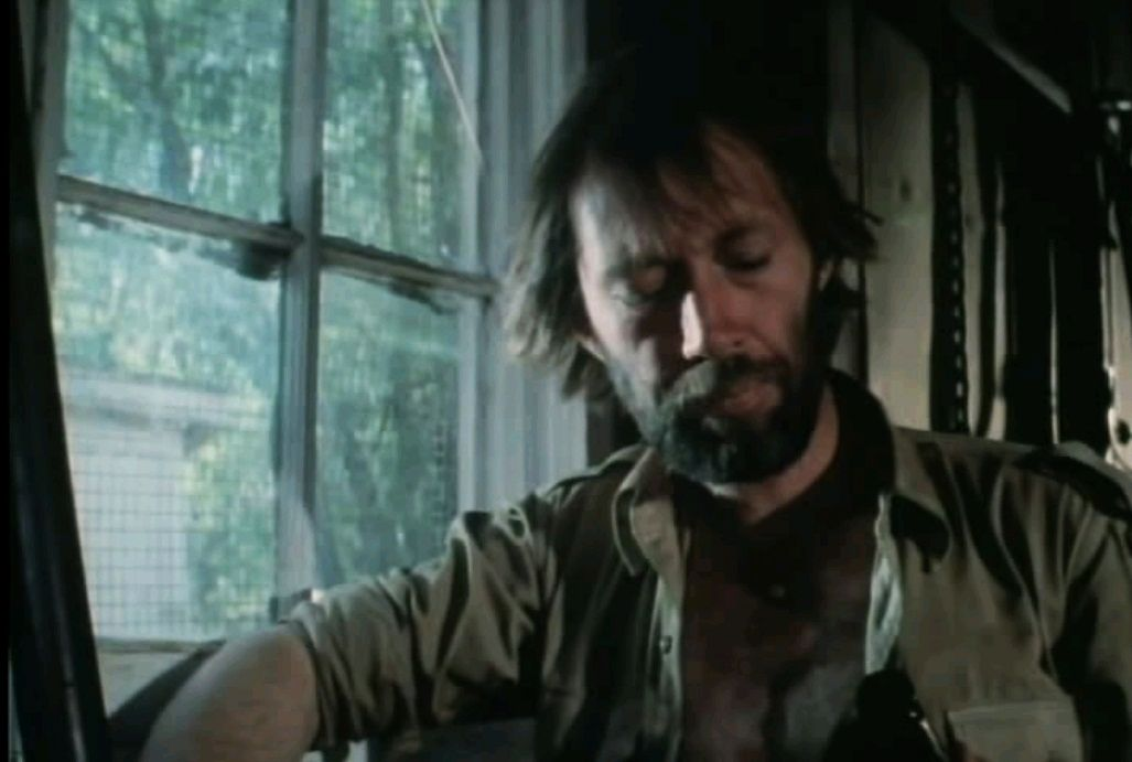 Американа / Americana (1981): кадр из фильма