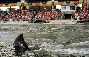 Челюсти 3 / Jaws 3-D (1983): кадр из фильма
