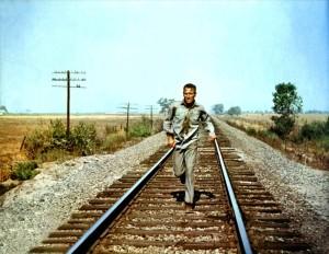 Хладнокровный Люк / Cool Hand Luke (1967): кадр из фильма