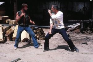 Одинокий волк МакКуэйд / Lone Wolf McQuade (1983): кадр из фильма