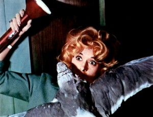 Птицы / The Birds (1963): кадр из фильма