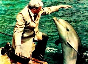 Крик дельфина / Krik delfina (1986): кадр из фильма