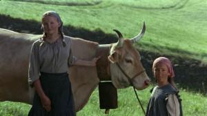 Коровы / Vacas (1992): кадр из фильма