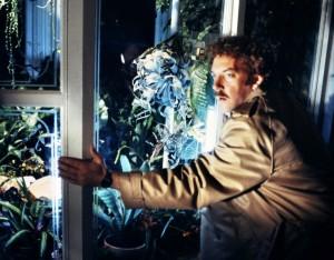 Вторжение похитителей тел / Invasion of the Body Snatchers (1978): кадр из фильма