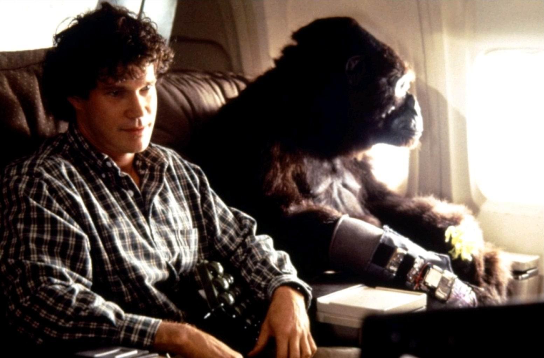 Конго / Congo (1995): кадр из фильма