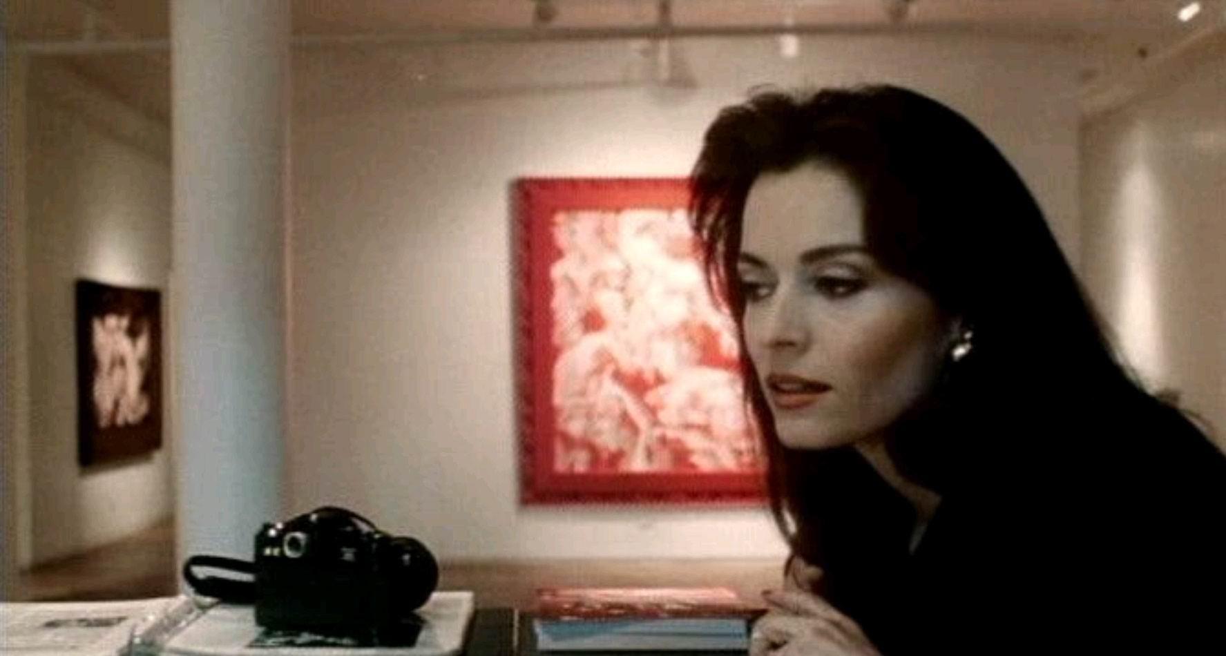 Все работы Вермееры в Нью-Йорке / All the Vermeers in New York (1990): кадр из фильма