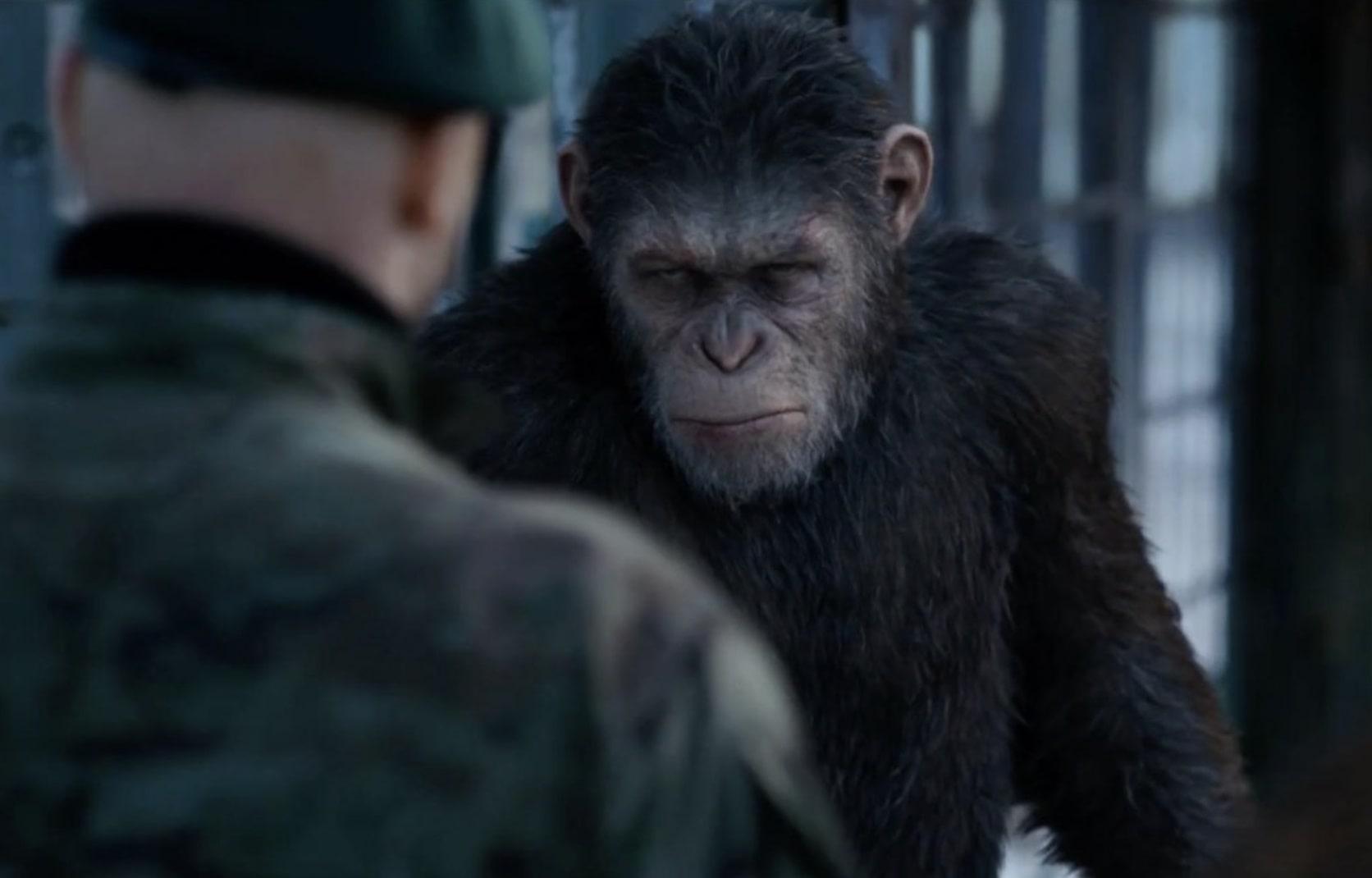 Планета обезьян: Война / War for the Planet of the Apes / La guerre de la planète des singes (2017): кадр из фильма