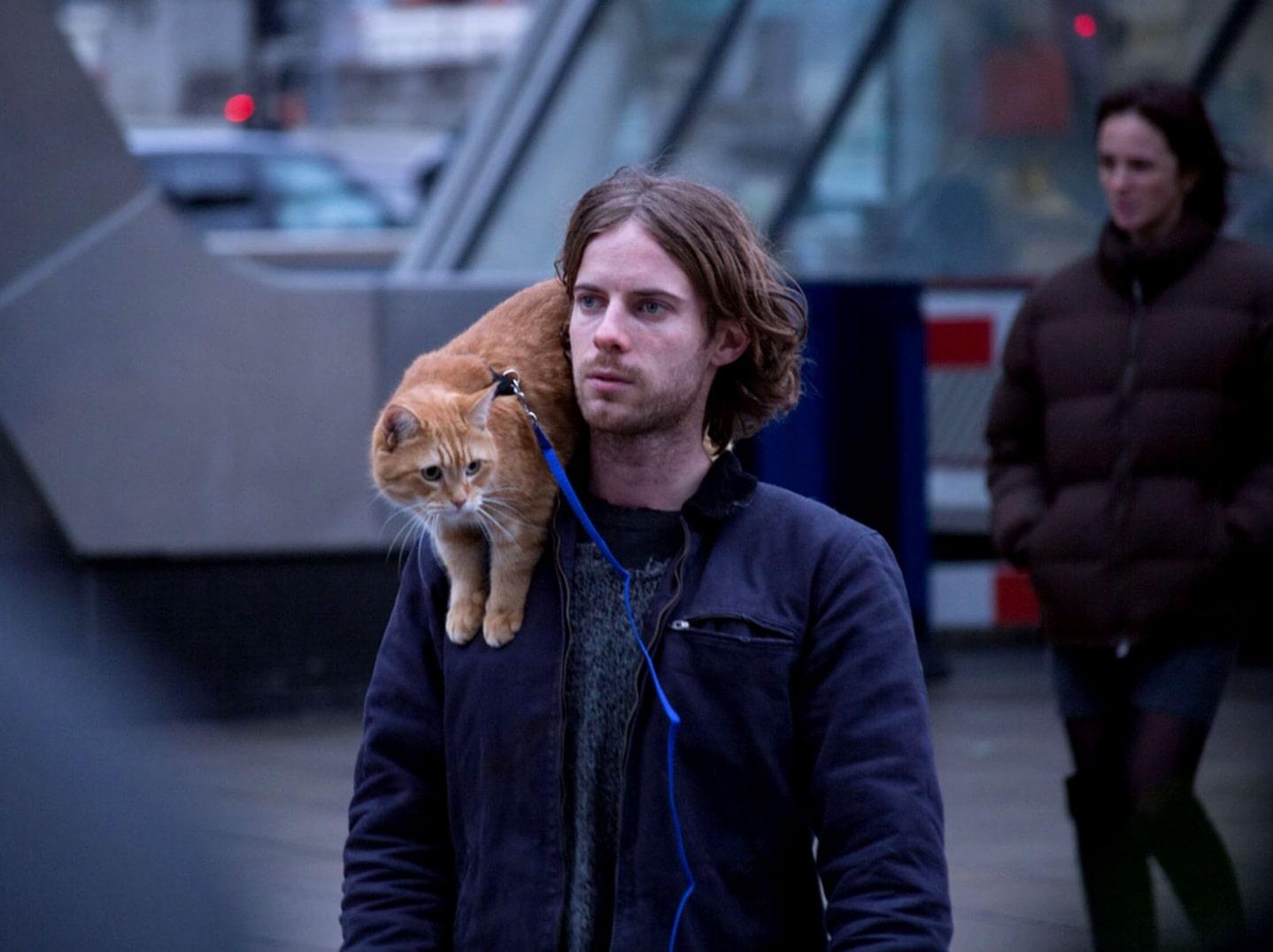 Уличный кот по кличке Боб / A Street Cat Named Bob (2016): кадр из фильма