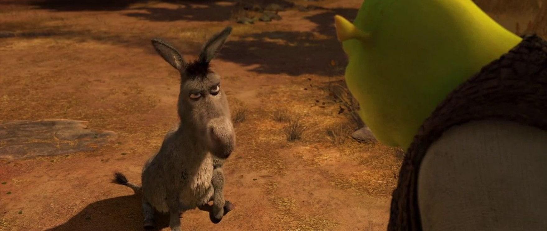 Шрек навсегда / Shrek Forever After (2010): кадр из фильма